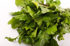 Fresh green pack rocca close up. Fresh green rocca for vegeterian and people who are on diet royalty free stock photography