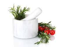 Fresh green rosemary in mortar Stock Image
