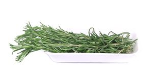 Fresh green rosemary in the package. Stock Images