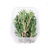 Fresh green rosemary Stock Photo
