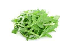 Fresh green rucola, rocket salad or arugula isolated on white background. Royalty Free Stock Images