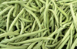 Fresh green runner beans Royalty Free Stock Image