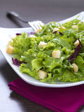 Fresh green salad. A mixed green vegetable salad with croutons served in a modern way stock photos