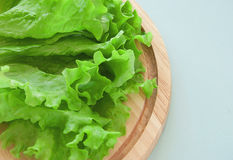 Fresh green salad Royalty Free Stock Photos