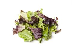 A fresh green salad Royalty Free Stock Photos