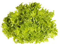 Fresh green salad Royalty Free Stock Images