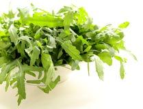 Fresh green salad of arugula Royalty Free Stock Photos