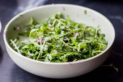 Fresh green salad with arugula, onion sauce, olive oil Stock Image