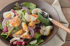 Fresh green salad with boiled eggs Stock Images