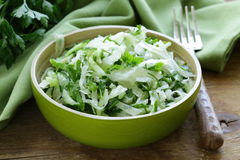 Fresh green salad with cabbage (coleslaw), cucumber and parsley Stock Image