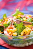 Fresh green salad with corn and anchovy. In a bowl Royalty Free Stock Photos