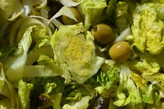 Fresh green salad, full frame. Healthy eating, a delicious green salad made up of lettuce and endives and garnished with green olives stock image