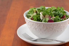 Fresh green salad. Fresh green kale and red radicchio salad in pretty white bowl with room for text Stock Photos