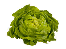 Fresh green salad - lettuce , isolated. On white Stock Photography