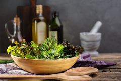 Fresh green salad mix. Stock Photos
