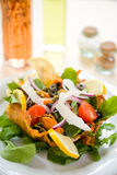 Fresh green salad with mussels and tomatoes Royalty Free Stock Images