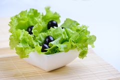 Fresh green salad. With olives in white bowl Stock Photos