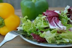 Fresh green salad plate, with spinach, arugula, romaine and lettuce. Healthy food. Wooden table. stock images