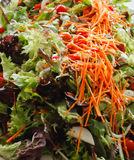 Fresh green salad. On platter with lettuce, carrots, tomatoes Royalty Free Stock Photography