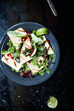 Fresh Green Salad with Pomegranate and Tacos Lemon Royalty Free Stock Photos