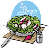 Fresh green salad with radish Stock Image