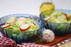 Fresh green salad with radish Royalty Free Stock Images