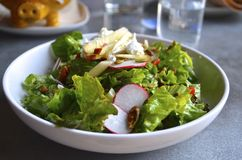 Fresh healthy green salad. Fresh green salad with radishes, pecans, and goat cheese Stock Image