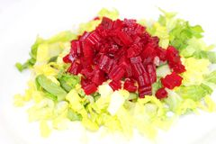 Fresh green salad with red radish Stock Photography