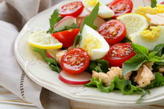Fresh green salad with salmon Stock Photography