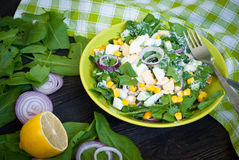 Fresh green salad with sorrel. Cucumber and eggs, greek yogurt and olive oil stock images