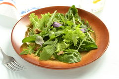 Fresh green salad with spinach, arugula, lettuce, herbs, nuts Royalty Free Stock Images