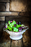Fresh green salad with spinach,arugula,romane and lettuce Stock Photography