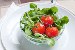 Fresh green salad and tomatoes Royalty Free Stock Images