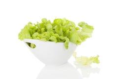 Fresh green salad. Stock Image