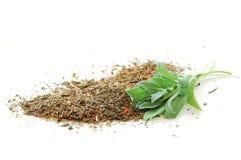 Fresh green salvia and herbal tea. Fresh leaves of green salvia herb and colorful herbal tea Stock Images
