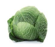 Fresh green savoy cabbage. On white background stock photo