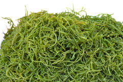 Fresh green seaweed on white Stock Photo