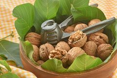 Walnuts and leaves with nutcracker stock photo