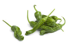 Fresh green shisito peppers Stock Images