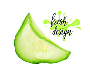 Fresh green slices of cucumber. Royalty Free Stock Image