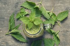 Free Fresh Green Smoothie With Wild Nettle And Other Herbs In Mason Jar. Stock Photos - 117827523