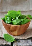 Fresh green sorrel. In to the bowl royalty free stock images