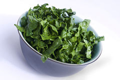 Fresh green spinach bowl Stock Photography