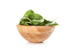 Fresh green spinach Royalty Free Stock Photo