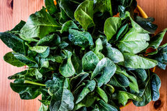 Fresh Green Spinach Leaves on wooden surface. Organic food Royalty Free Stock Photography