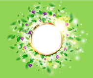 Fresh green spring background floral concept with round golden frame, leaves, daisies and crocus. Vector sunshine flower background with chamomile and sparks Royalty Free Stock Photography
