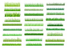Fresh Green Spring Grass Borders Stock Photo
