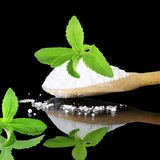 Fresh green  Stevia and extract powder on black background Stock Photos