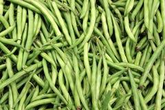 Fresh green string beans Royalty Free Stock Image