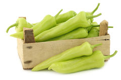 Fresh green sweet peppers (banana peppers) Royalty Free Stock Photography